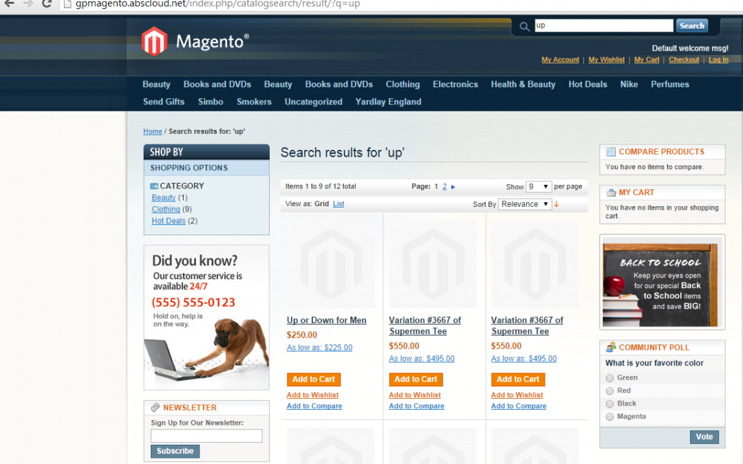 GP/ERP specific ecommerce solution OR Magento ecommerce?